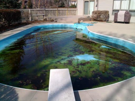 Horror pools double palms pool service for Putting shock in pool